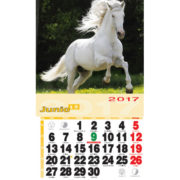 Calendario nevera iman Animales