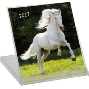 Calendario 2017 Cd Animales
