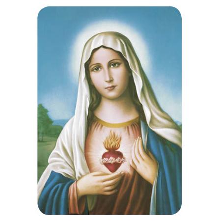 584-Sagrado-corazon-de-Maria