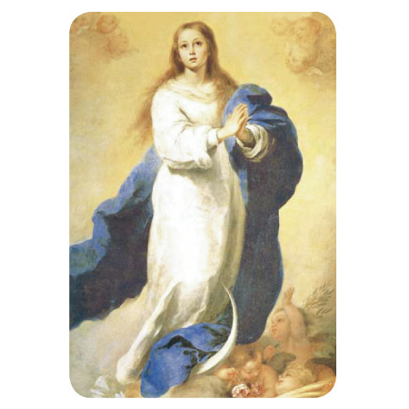 586-Inmaculada-Concepcion