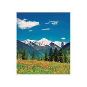 SA 1002 Montañas Rocosas, Canada